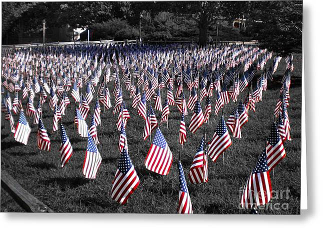 4th July Photographs Greeting Cards - Stars and stripes Greeting Card by Claudia Mottram