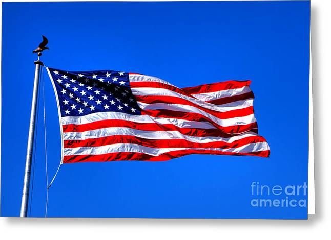 Flaps Greeting Cards - Stars and Stripes Forever Greeting Card by Olivier Le Queinec