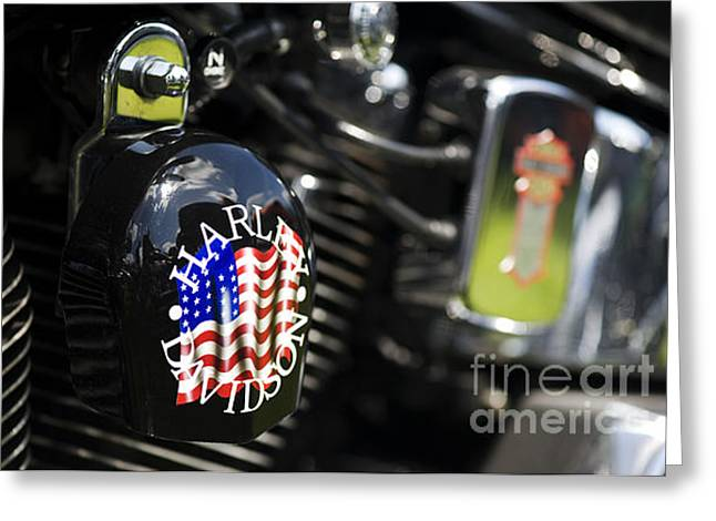 Red Hog Greeting Cards - Stars and Stripes Harley D Greeting Card by Tim Gainey