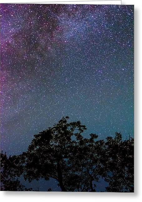 Night Photography Greeting Cards - Stars in Texas Greeting Card by David Morefield