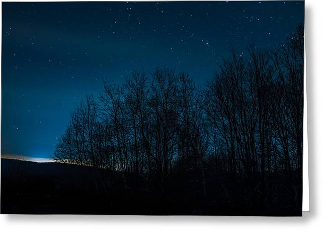 Constellations Photographs Greeting Cards - Stars through the forest Greeting Card by Chris Bordeleau