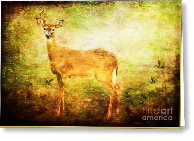 Startle Greeting Cards - Startled Greeting Card by Lois Bryan