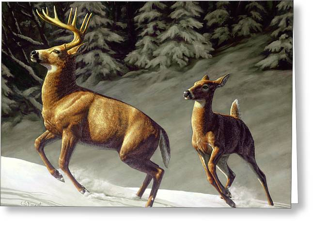 Does. Winter Greeting Cards - Startled - variation Greeting Card by Crista Forest