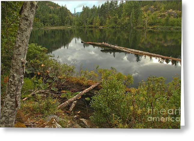 Canadian Wilderness Greeting Cards - Starvation Lake - British Columbia Greeting Card by Adam Jewell