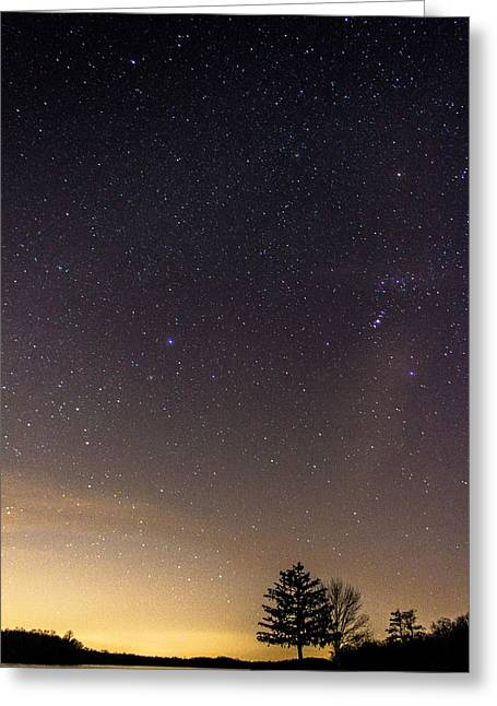 Little Dipper Greeting Cards - Stary night Greeting Card by Jahred Allen