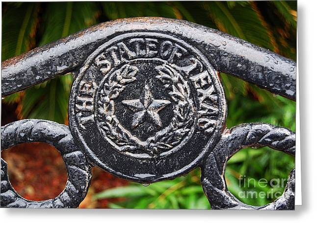 Rustic Greeting Cards - State of Texas Seal and Star on Iron Fence after Rain Greeting Card by Shawn O