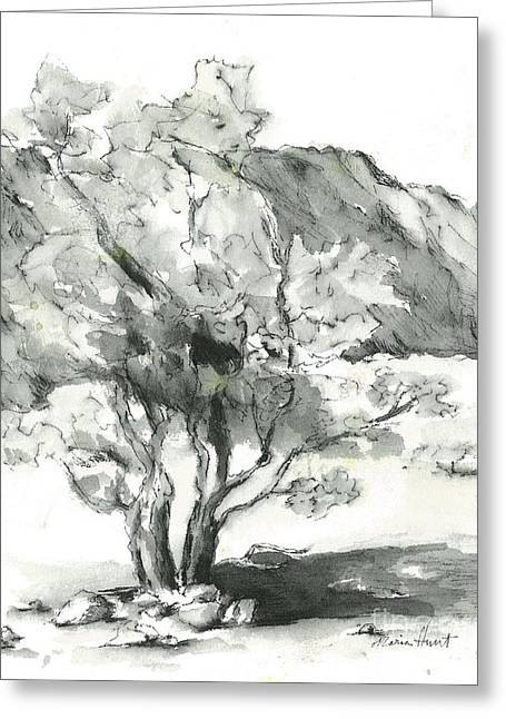 Nature Scene Paintings Greeting Cards - Stately Smoketree Greeting Card by Maria Hunt