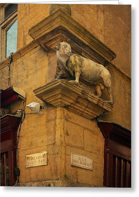 Bouchon Greeting Cards - Statue at Rue du Boeuf in Old Lyon Greeting Card by Carla Parris