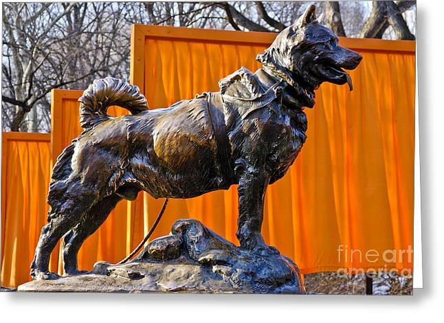 Huskies Greeting Cards - Statue of Balto in NYC Central Park Greeting Card by Anthony Sacco