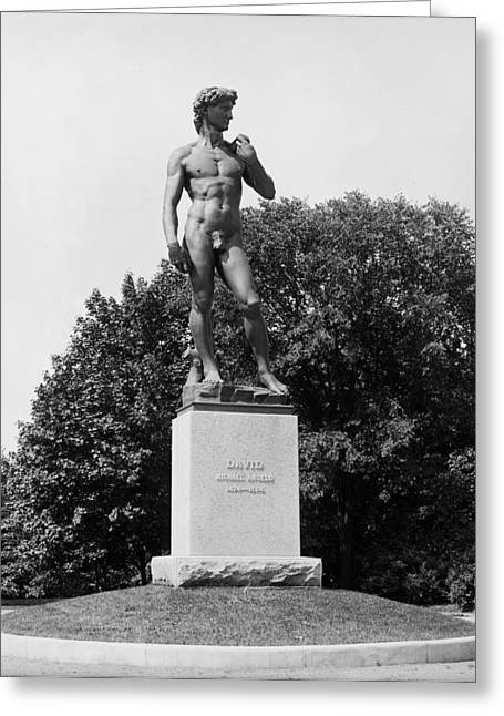 Michelangelo Greeting Cards - Statue of David Delaware Park Buffalo NY Greeting Card by Digital Reproductions