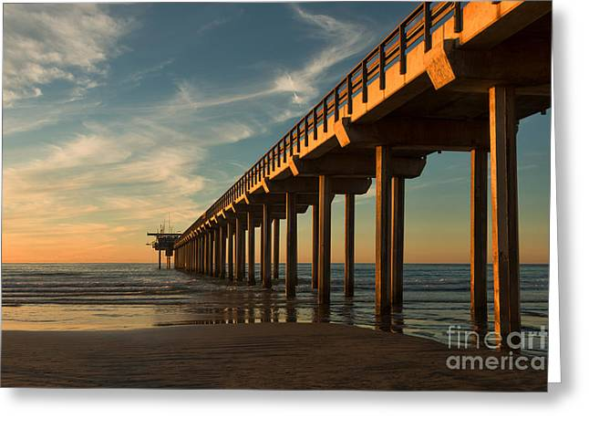 California Beach Greeting Cards - Stay Gold Greeting Card by Ana V  Ramirez