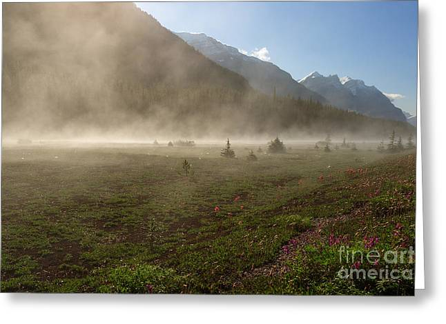 Charles Kozierok Greeting Cards - Steam Greeting Card by Charles Kozierok