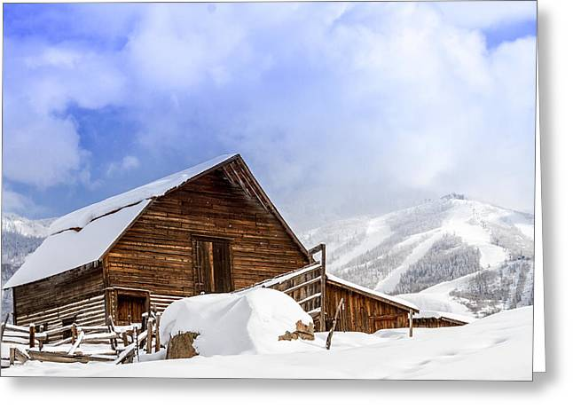 Wintry Photographs Greeting Cards - Steamboat Springs Barn and Ski Area Greeting Card by Teri Virbickis