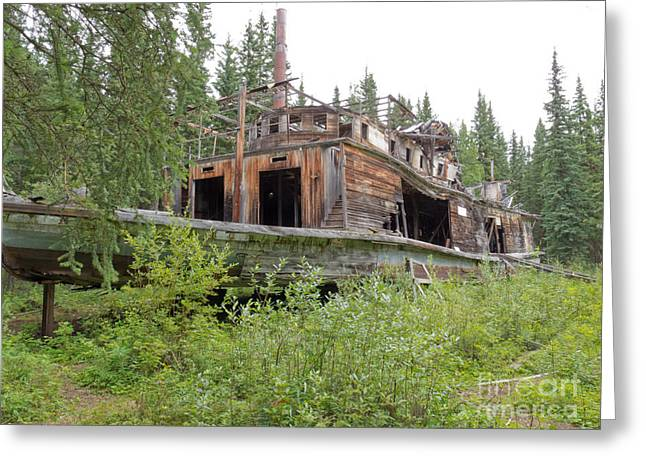 Wooden Ship Greeting Cards - Steamboat wreck Evelyn at Hootalinqua Yukon Canada Greeting Card by Stephan Pietzko