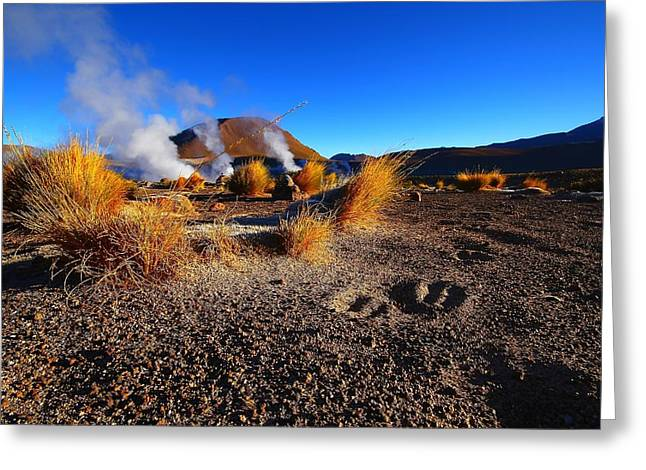 Chile Greeting Cards - Steaming Desert 2 Greeting Card by FireFlux Studios