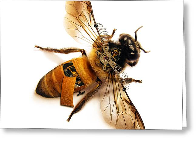 Steampunk Greeting Cards - Steampunk Bee Greeting Card by Flamenco72