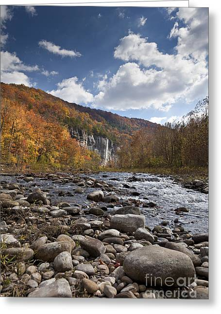 Arkansas Greeting Cards - Steel Creek Greeting Card by Brandon Alms