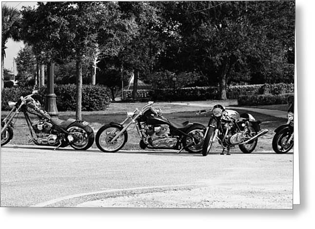Steel Horses Greeting Card by Laura Fasulo