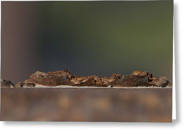 Ferrum Greeting Cards - Steel Landscape Greeting Card by Fran Riley