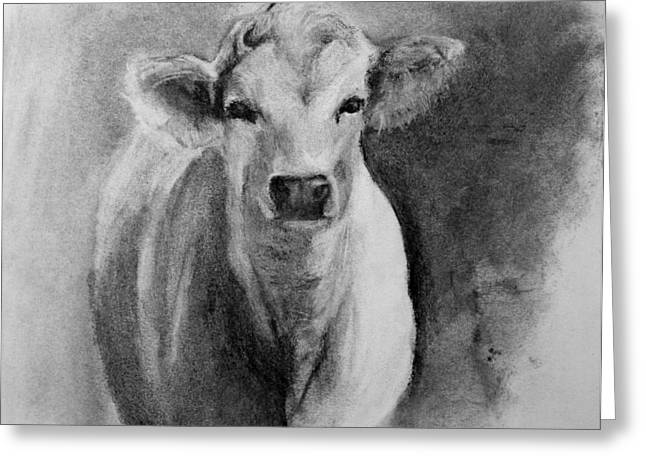 Steer Drawings Greeting Cards - Steer- Drawing from Life Greeting Card by Michele  Bruce-Carter