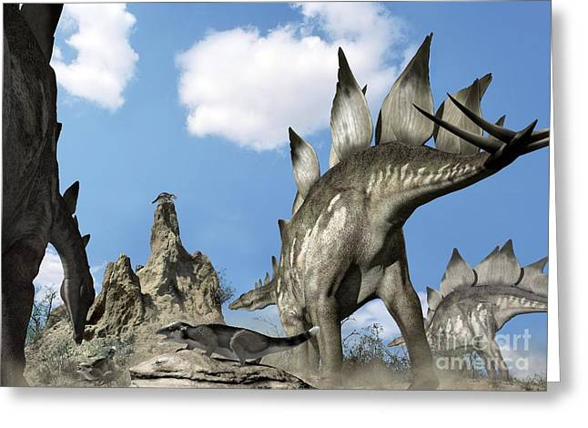 Stegosaurus Greeting Cards - Stegosaurus Dinosaur Greeting Card by José Antonio Peñas