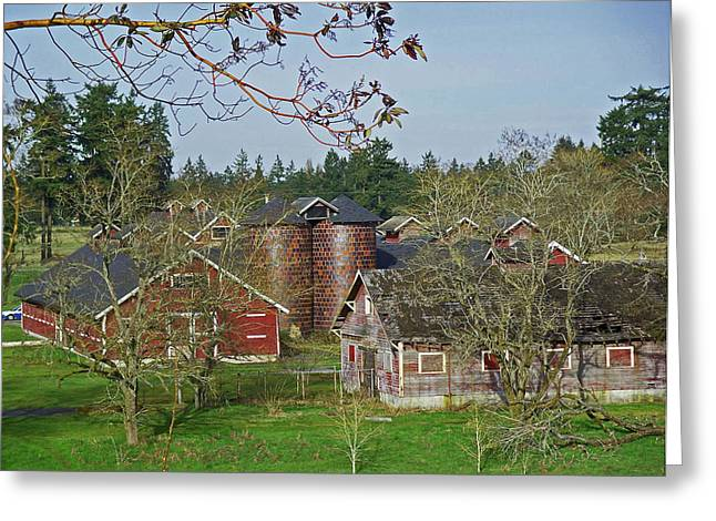 Steilacoom Park Barn And Silo's Greeting Card by Tikvah's Hope
