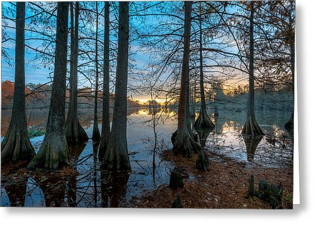 Parks And Wildlife Greeting Cards - Steinhagen Reservoir Sunrise Greeting Card by David Morefield
