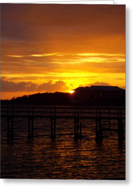 Storm Prints Digital Art Greeting Cards - Steinhatchee Sunset 1 Greeting Card by Sheri McLeroy