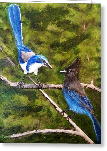 Stellar Paintings Greeting Cards - Stellar Blue Jay meets Scrub Jay  Greeting Card by Scott French