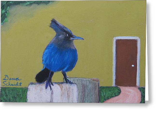 San Francisco Bay Pastels Greeting Cards - Stellars Jay in San Francisco Bay Greeting Card by Dana Schmidt