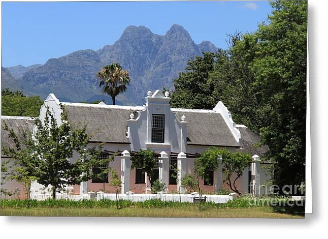 Stellenbosch Greeting Cards - Stellenbosch Greeting Card by David Van der Merwe