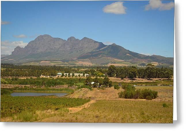 Wine Tour Greeting Cards - Stellenbosch Greeting Card by Devan M