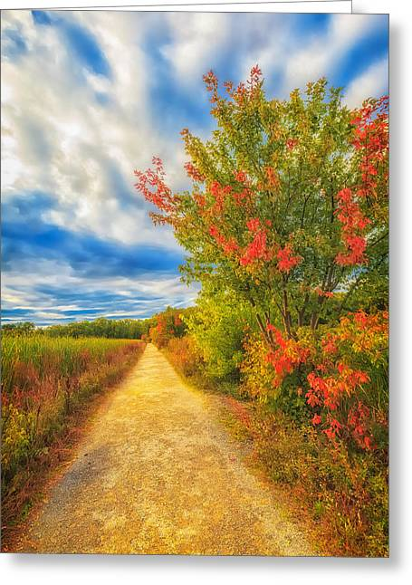Concord Greeting Cards - Step back into Fall Greeting Card by Sylvia J Zarco