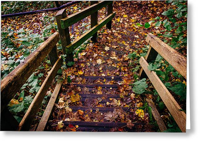 Wooden Stairs Greeting Cards - Step Down Greeting Card by Pati Photography