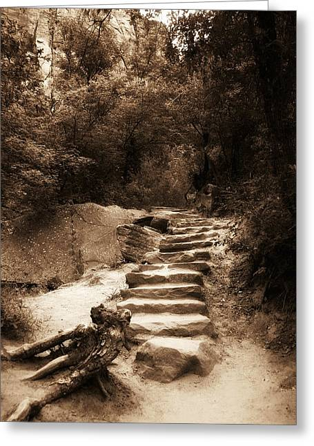 Stone Steps Photographs Greeting Cards - Step into Nature Greeting Card by Aron Kearney Fine Art Photography
