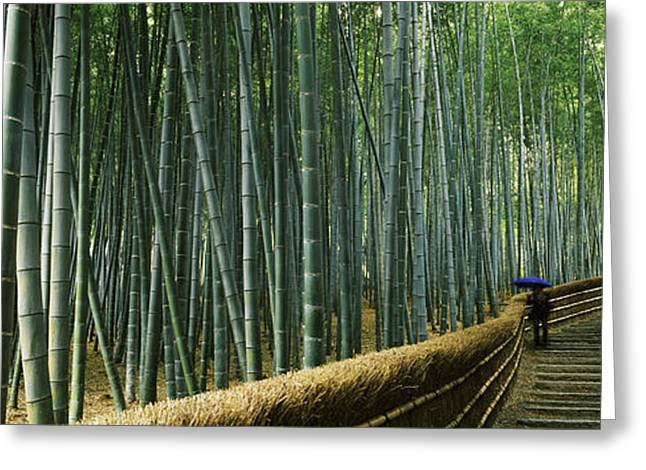 Bamboo Fence Greeting Cards - Stepped Walkway Passing Greeting Card by Panoramic Images