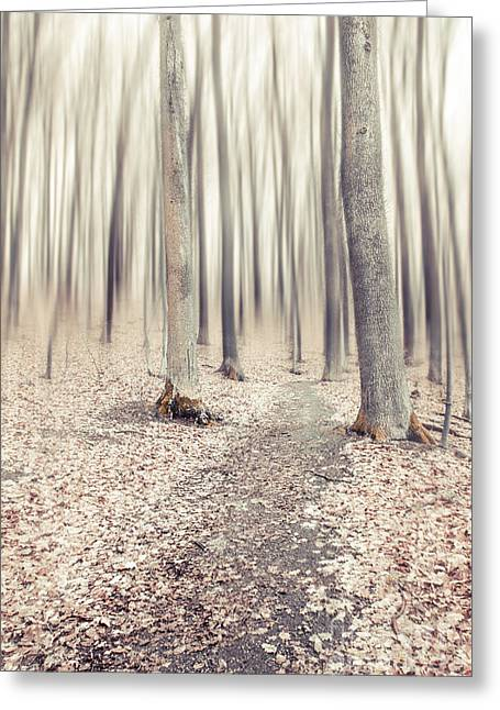 Hannes Cmarits Greeting Cards - Steppin Through The Last Days Of Autumn Greeting Card by Hannes Cmarits