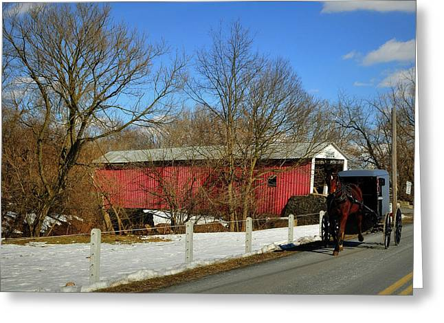 Horse And Buggy Greeting Cards - Stepping Back in Time Greeting Card by Dennis Stanton