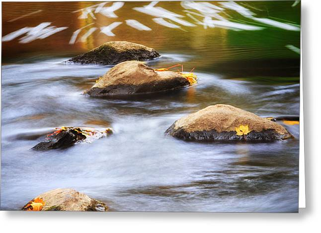 Stepping Stones Greeting Cards - Stepping Stones Square Greeting Card by Bill  Wakeley