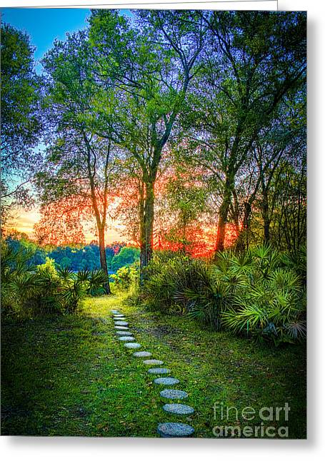 Stepping Stones Greeting Cards - Stepping Stones to the Light Greeting Card by Marvin Spates