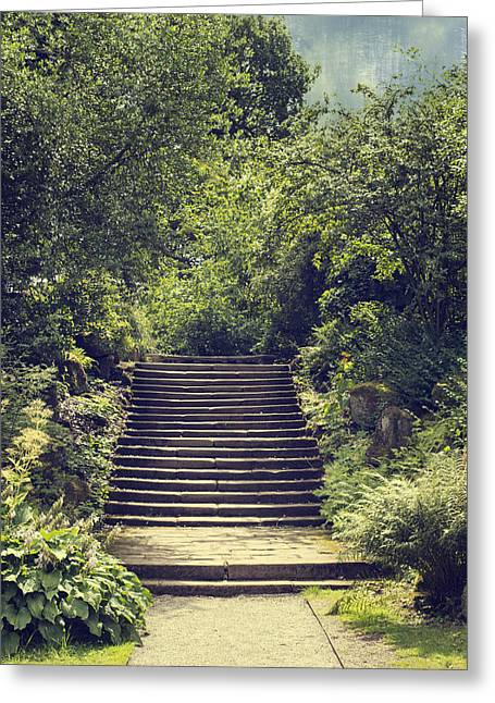 Stone Steps Greeting Cards - Steps Greeting Card by Amanda And Christopher Elwell