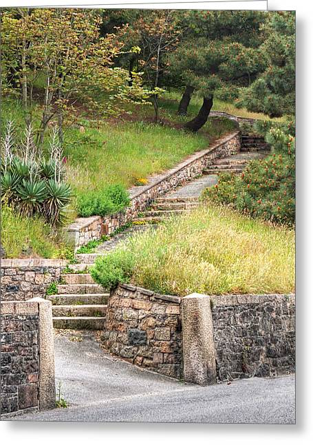 Stone Steps Photographs Greeting Cards - Steps Guiding The Way Greeting Card by Gill Billington