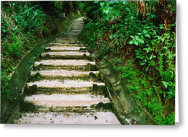 Moss Greeting Cards - Steps Leading To A Lighthouse, Morro De Greeting Card by Panoramic Images