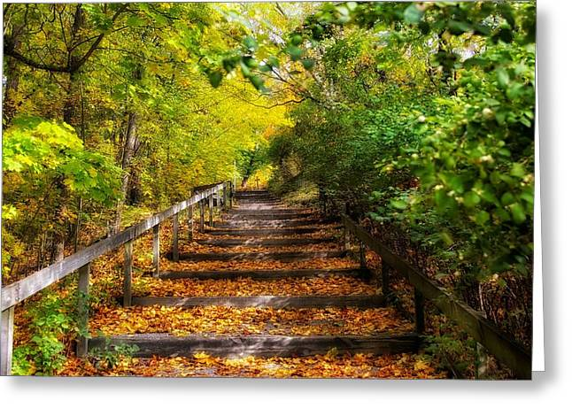 Hdr Landscape Greeting Cards - Steps through Autumn Greeting Card by Mountain Dreams