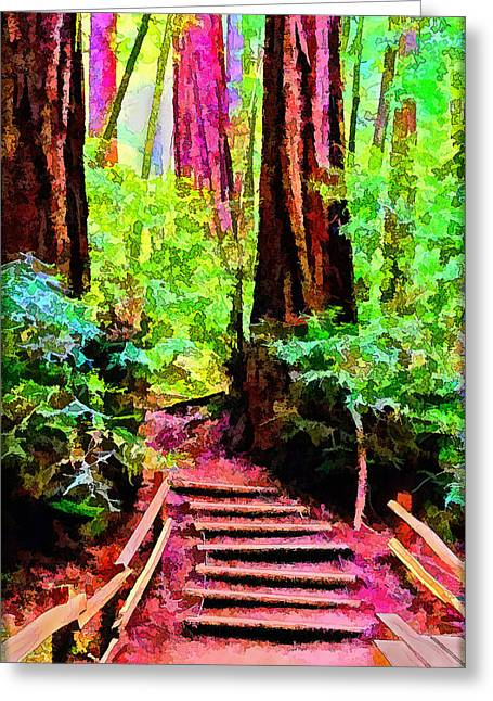 Wooden Stairs Greeting Cards - Steps To Reverie Amongst Ancient Trees Greeting Card by Joel Bruce Wallach