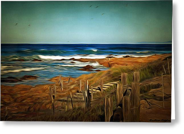 California Ocean Photography Paintings Greeting Cards - Steps To The Sea Digital Greeting Card by Barbara Snyder