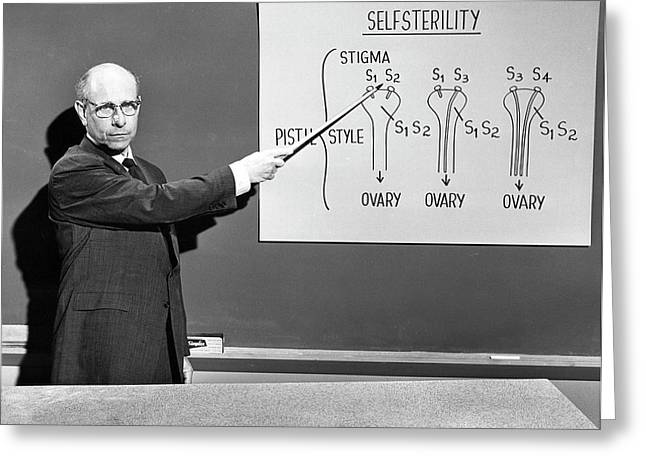 Stern Lectures On Self-sterility Greeting Card by American Philosophical Society