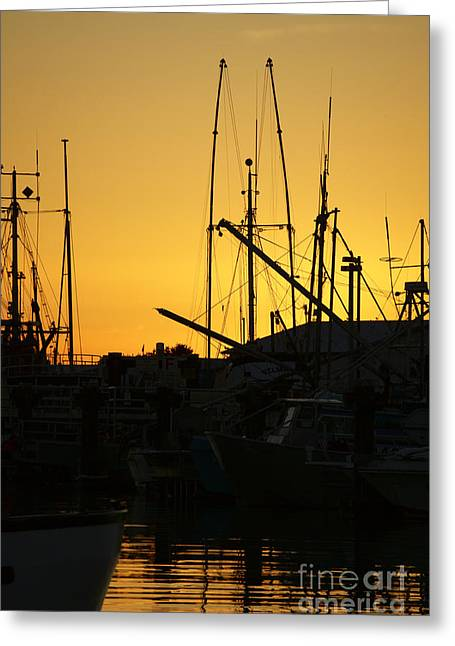 Masts Greeting Cards - STEVESTON SUNSET Vancouver Greeting Card by John  Mitchell