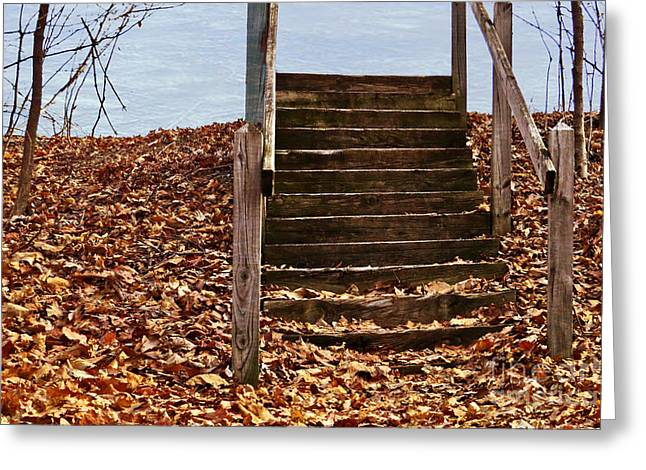 Wooden Stairs Greeting Cards - Stairs In The Woods Greeting Card by Dawn Gari