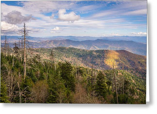 Great Smokey Mountains Greeting Cards - Still Alive Greeting Card by Clay Townsend